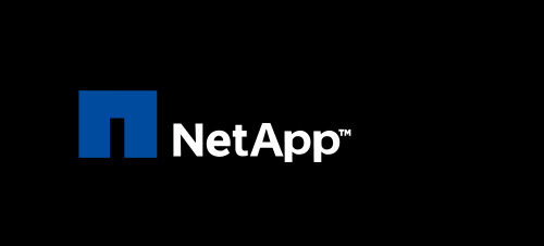 ITGLOBAL.COM Was Granted a NetApp Award for Financial Results over the Year 2019